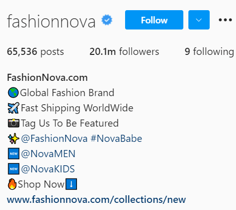Snapshot Of Fashionnova Instagram Biography. Bio Includes Brand Hashtag, Outlinks And Website Link